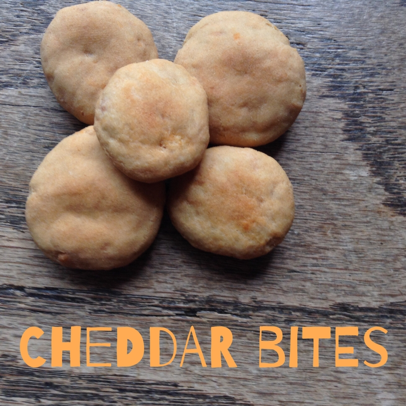 cheddar dog treats