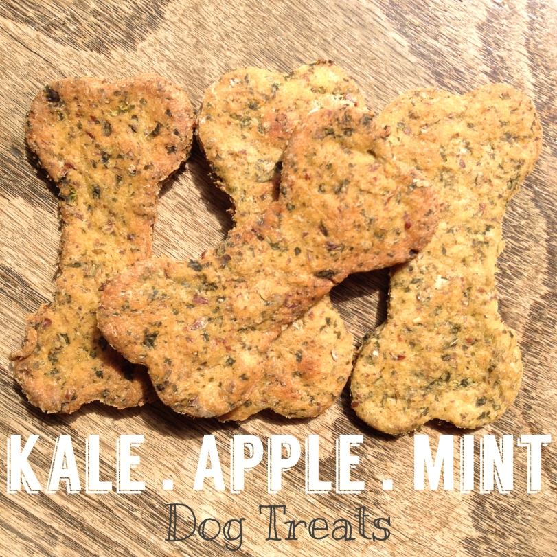 kale apple mint dog treats